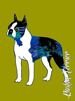 Boston Terrier Mixed Media - Boston Terrier Collection by Marvin Blaine