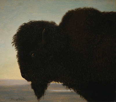 Buffalo River Painting - Buffalo Head by Albert Bierstadt
