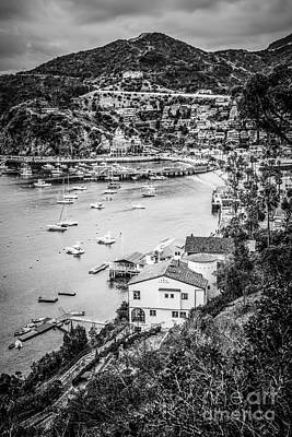 Santa Catalina Island Photograph - Catalina Island Avalon Bay Black And White Photo by Paul Velgos