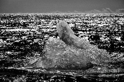 Iceberg Washing Up On Black Sand Beach At Jokulsarlon Iceland Print by Joe Fox