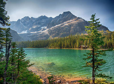 Lake O'hara - Yoho National Park Print by Yefim Bam