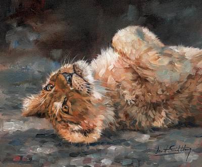 Lion Cub Print by David Stribbling