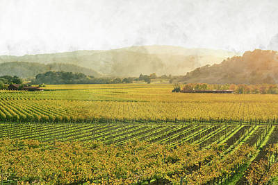 Napa Valley California In Autumn Print by Brandon Bourdages