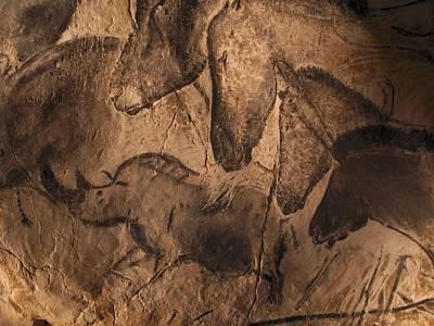 Chauvet Cave Photograph - Stone-age Cave Paintings, Chauvet, France by Javier Truebamsf
