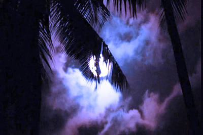 Raccoon Mixed Media - 4 Strange Ways The Moon Might Affect Our Bodies Read At News Dot Health Dot Com by Navin Joshi