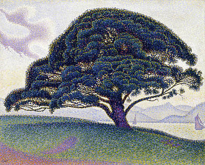 Impressionism Painting - The Bonaventure Pine by Paul Signac