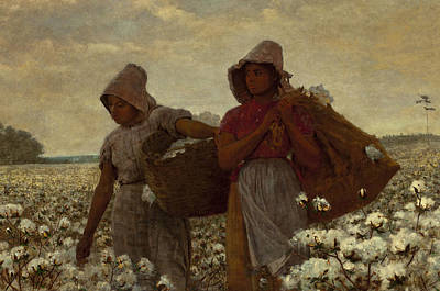 Slavery Painting - The Cotton Pickers by Winslow Homer