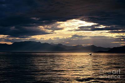 View Of Alaska Print by John Hyde - Printscapes