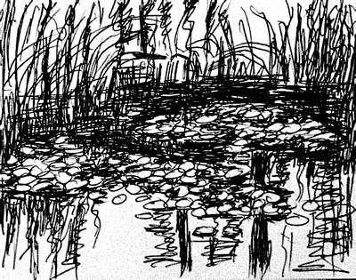 Waterlily Drawing - Waterlily Pond by Hae Kim