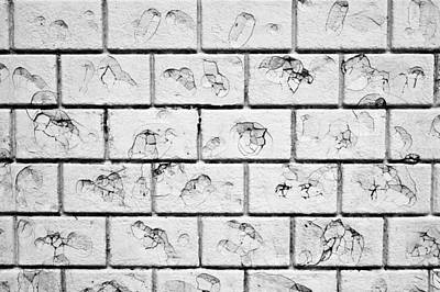 Clay Photograph - White Brick Wall by Tom Gowanlock