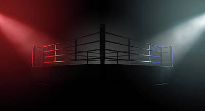 Boxing Ring Opposing Corners Print by Allan Swart
