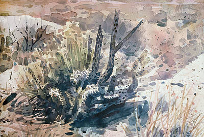 Cholla Painting - Cholla by Donald Maier