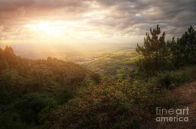 Vineyard Photograph - Countryside Landscape by Carlos Caetano