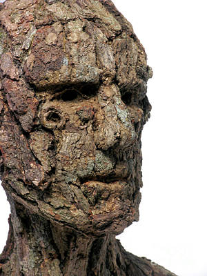 Ent Sculpture - Revered A Natural Portrait Bust Sculpture By Adam Long by Adam Long
