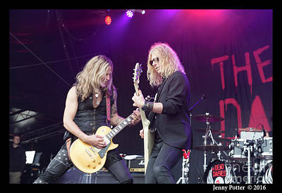 Mendoza Photograph - The Dead Daisies  by Jenny Potter