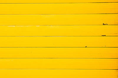 Metallic Sheets Photograph - Yellow Metal by Tom Gowanlock