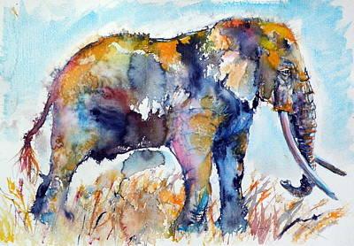 Colorful Elephant Print by Kovacs Anna Brigitta
