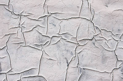 Cracked Paint Print by Tom Gowanlock