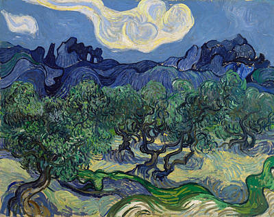 Post-impressionist Painting - The Olive Trees by Vincent van Gogh