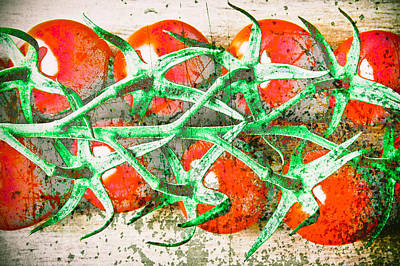 Grocery Photograph - Tomatoes by Tom Gowanlock
