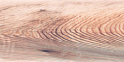 Wood Texture Print by Tom Gowanlock