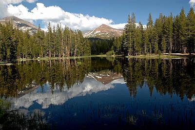 Brush Photograph - Yosemite Reflections by LeeAnn McLaneGoetz McLaneGoetzStudioLLCcom