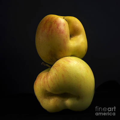 Cut Out Photograph - Apples by Bernard Jaubert