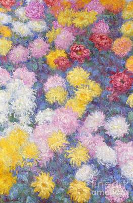 Chrysanthemums Print by Claude Monet
