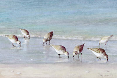 Sandpiper Painting - 7 Sandpipers On Siesta Key Beach by Shawn McLoughlin