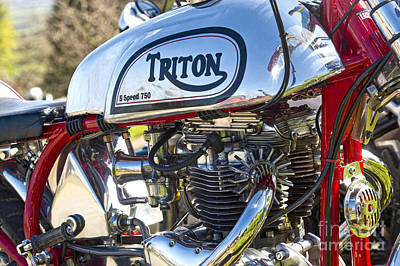 750 Triton Print by Tim Gainey
