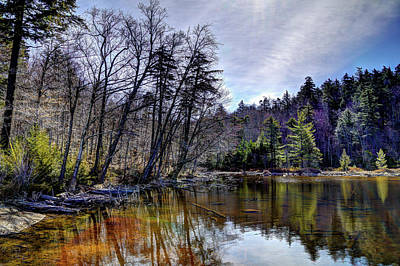 Tree Photograph - 7th Lake Reflections by David Patterson