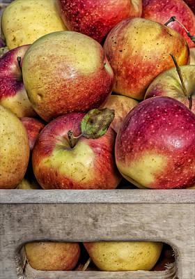 Apples Print by Robert Ullmann