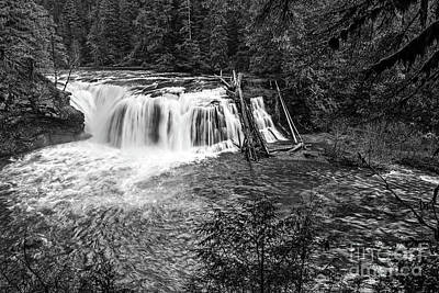Lower Lewis River Falls In Washington State. Print by Jamie Pham