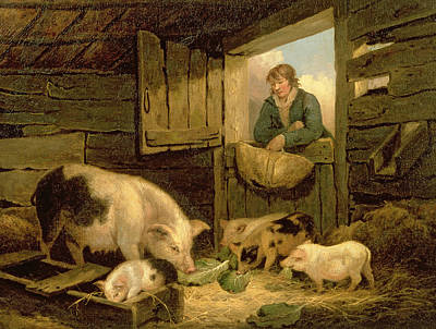 Dinner Painting - A Boy Looking Into A Pig Sty by George Morland