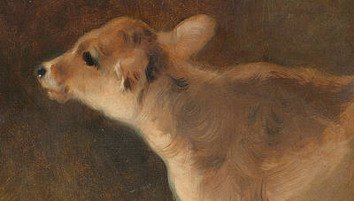 Cute Cows Painting - A Calf by GW Horlor