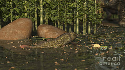 Triassic Digital Art - A Ceratodus Lungfish From The Early by Arthur Dorety