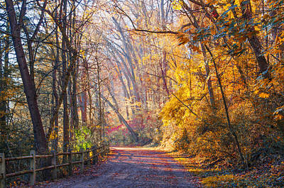 A Change Of Seasons On Forbidden Drive Print by Bill Cannon