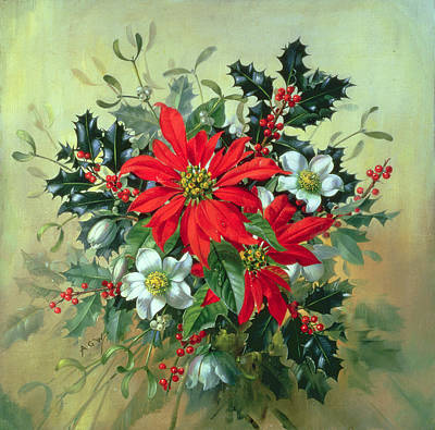 A Christmas Arrangement With Holly Mistletoe And Other Winter Flowers Print by Albert Williams