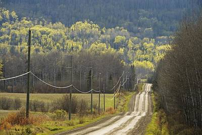 Photograph - A Country Road With Electrical Wires by Susan Dykstra