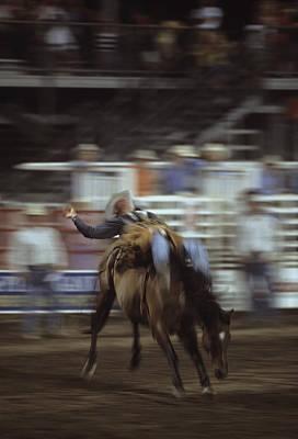 A Cowboy Rides A Bucking Bronco Print by Taylor S. Kennedy