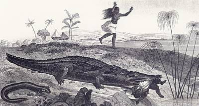 Bite Drawing - A Crocodile Snatches A Child From An by Vintage Design Pics