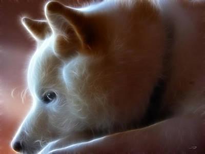 Purebred Digital Art - A Dogs Life by Stuart Turnbull