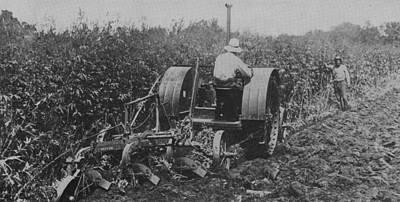 A Farmer Driving A Tractor Print by American School