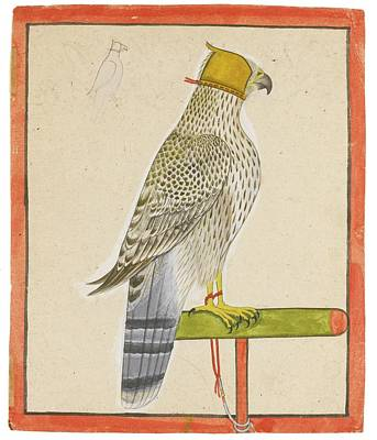Raja Painting - A Favourite Falcon Of Raja Balwant by Eastern Accent