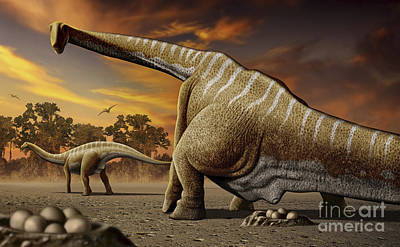 Anticipation Digital Art - A Female Apatosaurus Laying Her Eggs by Mohamad Haghani