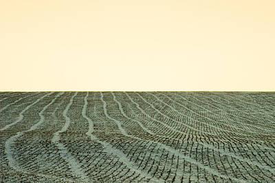 A Field Stitched Print by Todd Klassy