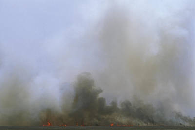 A Fire Burns In The Marsh On Ocracoke Print by Stephen Alvarez