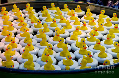 A Flock Of Rubber Duckies Print by Jennifer Booher