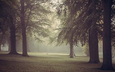 A Foggy Morning Print by Chris Fletcher
