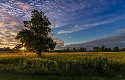 Syracuse Ny Photograph - A Fresh Begining by Everet Regal